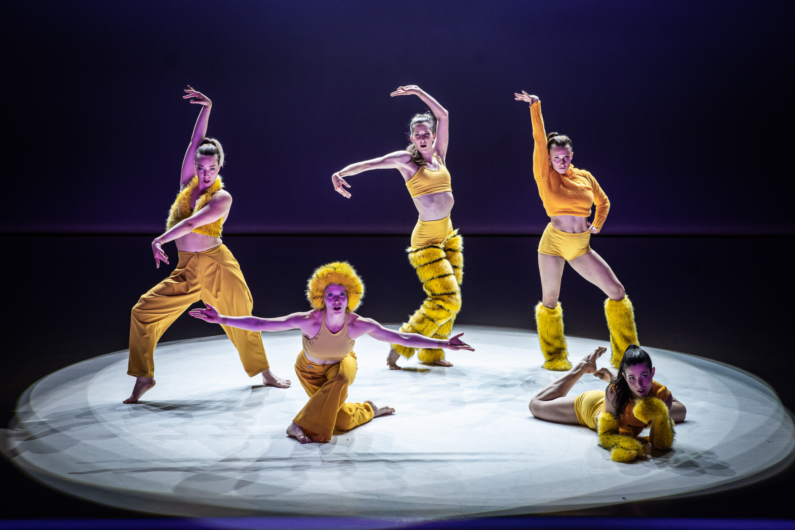 A RAMAZURI című tánc-cirkuszi előadás egy izgalmas és látványos összművészeti produkció.